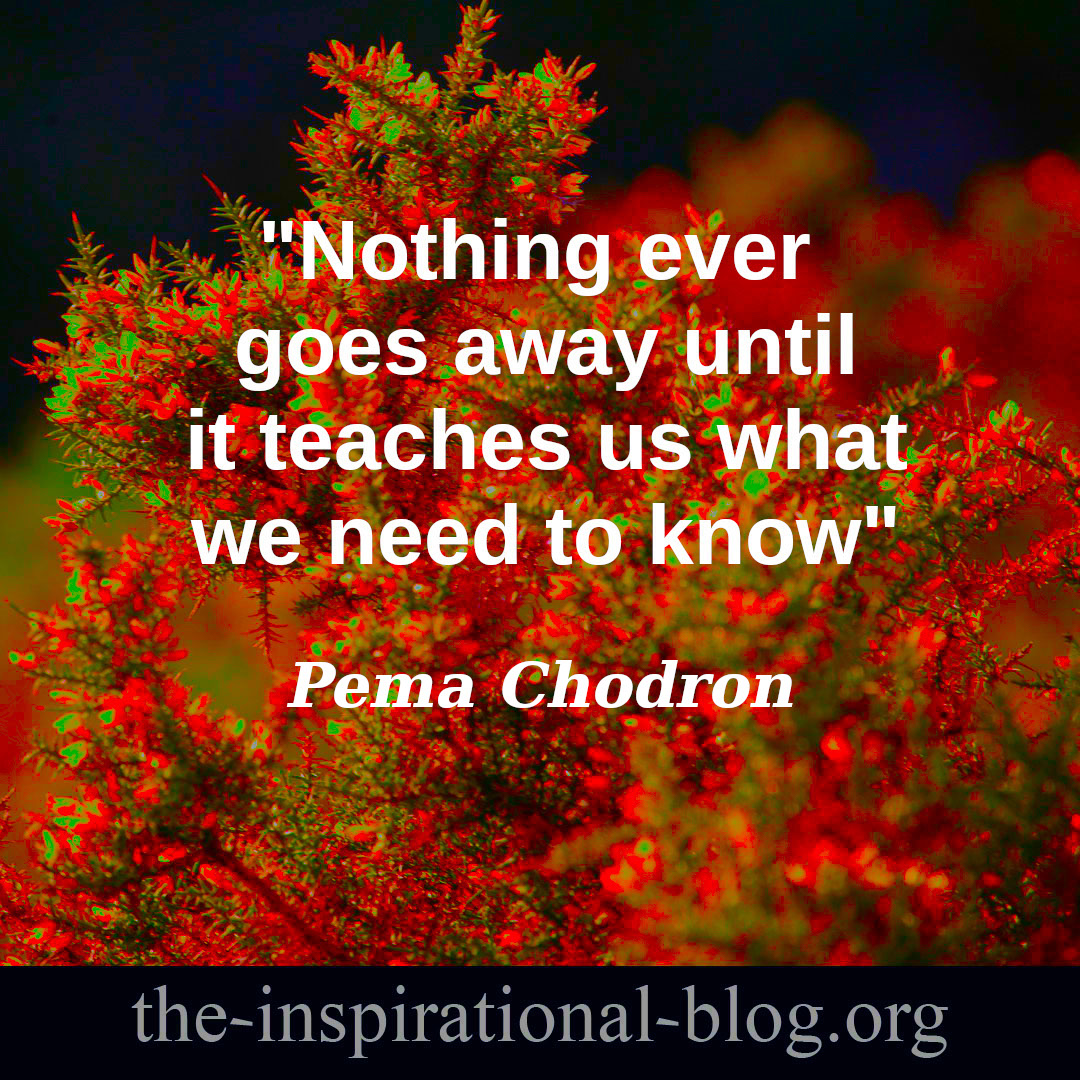 Inspirational Pema Chodron quotes