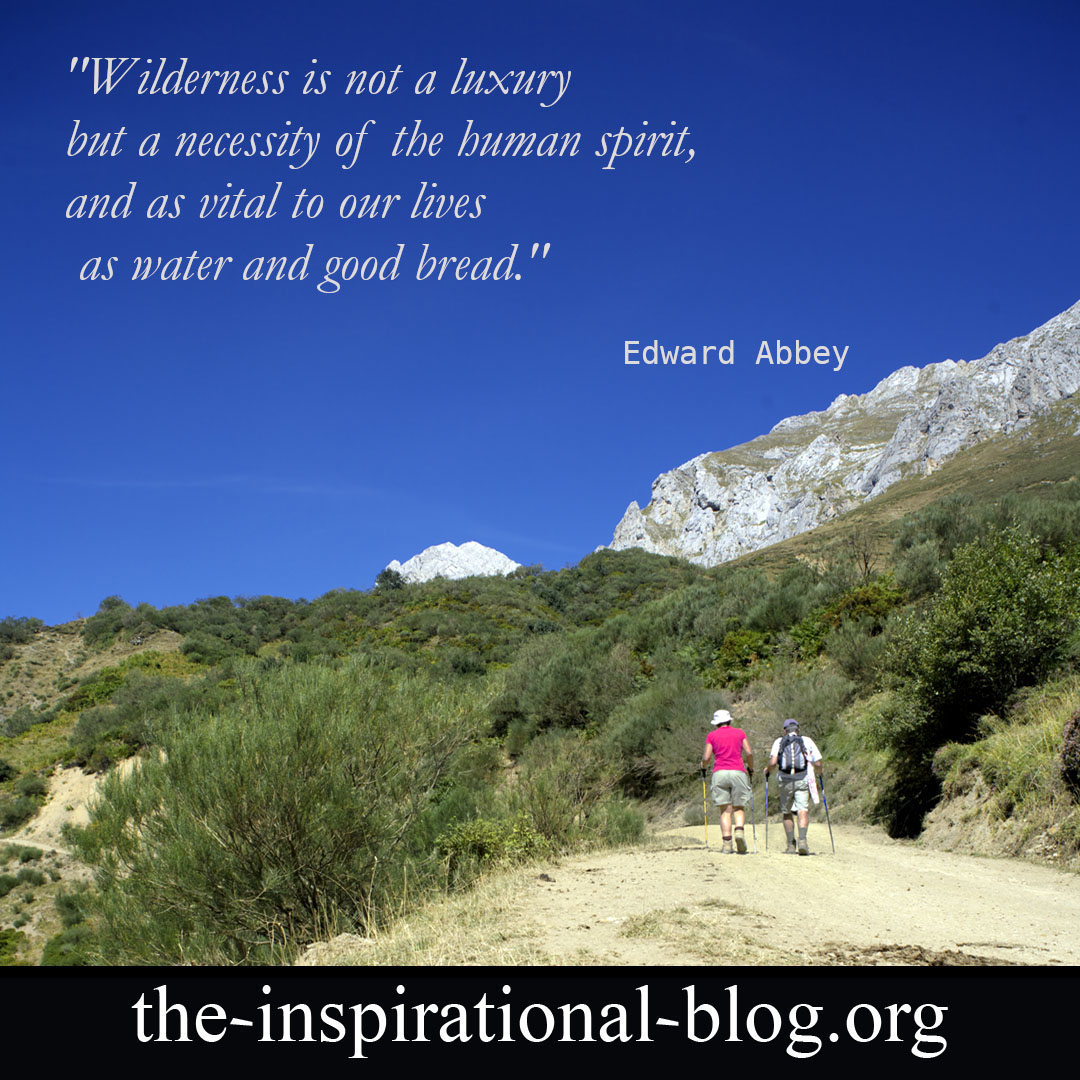 Inspirational Edward Abbey quotes